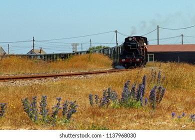 Dungeness,Kent/UK 06-28-18 Romney, Hythe and Dymchurch miniature railway. The locomotive Hercules approaches Dungeness station