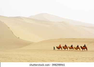 DUNHUANG, GANSU, CHINA- MARCH 11, 2016: Group of tourists are riding camels in the desert at Mingsha Mountain, Dunhuang, China. This is a famous place part of silk road in Dunhuang.