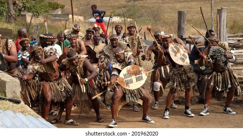 DURBAN, SOUTH AFRICA - JUNE 29: A group of men perform a traditional Zulu war dance at a wedding celebration known as Umabo in Kwa Zulu Natal, South Africa on June 29, 2013.