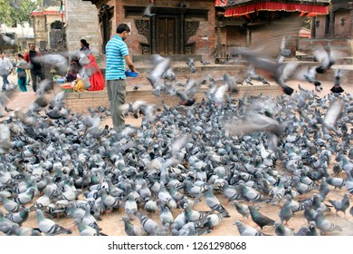 Durbar Square, Katmandu, Nepal- 08 Oct 2014: Pigeons at Durbar square are fed by locals.