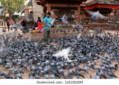 Durbar Square, Katmandu, Nepal- 08 Oct 2014: Pigeons at Durbar square are fed by locals and tourists.