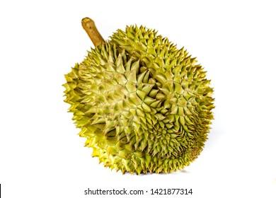 Durian 1 durian fruit  White durian fruit Durian Monthong