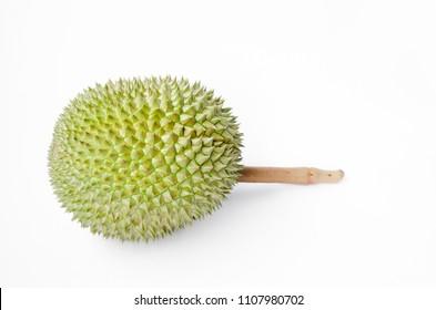 Durian fruit isolated on white background.King of fruits.