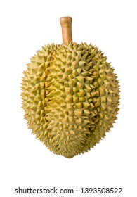 Durian isolated on white background, Durian isolated for packaging design (No shadow).