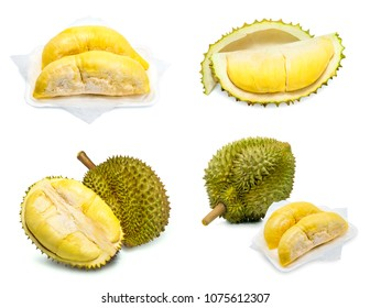 Durian King of fruits,durian fruit with delicious golden yellow soft flesh,durian isolated on white background,