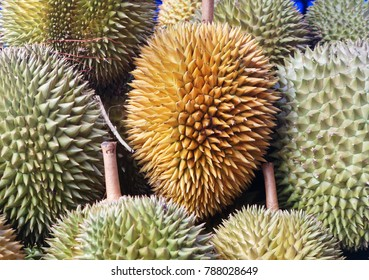 Durian on display for sale