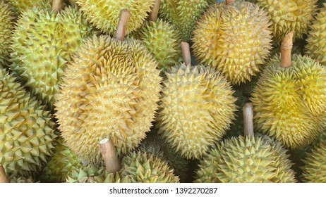 Durian Thailand.Durian king of fruit.Group of fresh durians in the durian market.The Texture of Durian in the market.