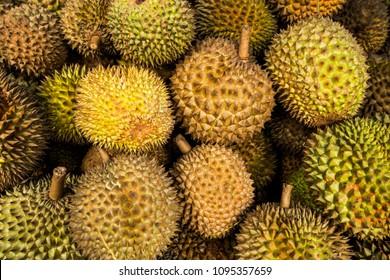 durians Musang King aromatic asian fruit background Mao Shan Wang