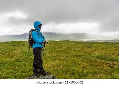 During an arctic summer storm a massive mosquito swarm engulfs a teenage hiker on the tundra. Galbraith Lake, Dalton highway, Alaska.