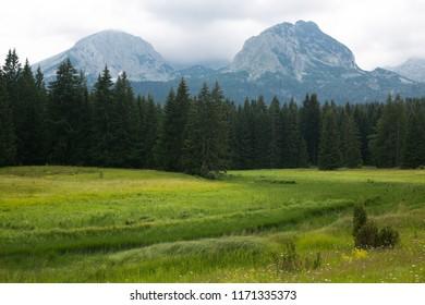 Durmitor national Park. Mount Bobotov-Kuk. Montenegro.