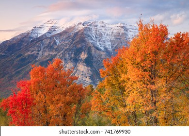 Dusk autumn landscape in the Wasatch Mountains, Utah, USA.