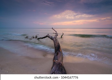 Dusk on the beach Weststrand at Darss Peninsula in Germany