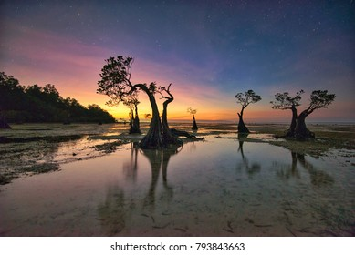 Dusk scenery at Walakiri Beach in Sumba Island, Indonesia, with its exotic mangrove trees.