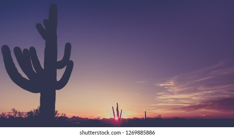Dusk sunset over Phoenix desert landscape in Arizona,USA. Saguaro Cactus tree in foreground.