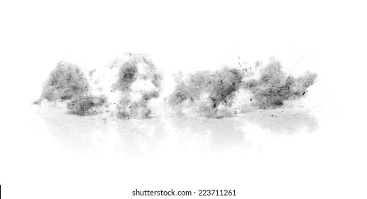 Dust bunnies on white reflecting background