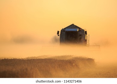 dust during harvest with harvester