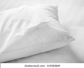 Dust mites pillow and bedding cover.