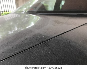 dust on car, dirty car