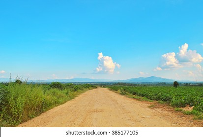 Dust road and blue sky