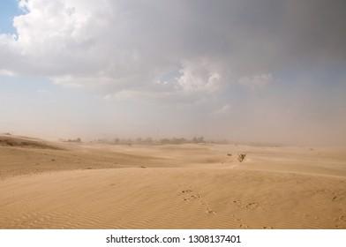 Dust storm in the Thar desert