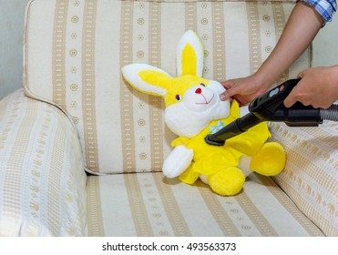Dust. Use a vacuum cleaner to clean the doll. To prevent dust and dust mites that cause allergies.