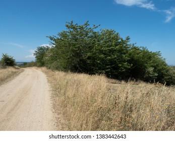 Dusty country road near the village of Colăreț, Mehedinți county, Romania