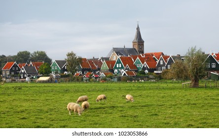 Dutch authentic pastoral landscape with green meadow, water canals and rural houses. Fat sheep graze on green juicy grass. Dark clouds cover the sky before the rain. Marken. Netherlands