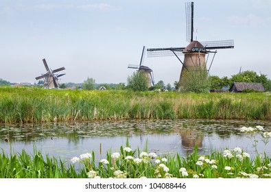 Dutch country landscape with windmills and blooming Cow parsley at the water side in spring at Kinderdijk, the Netherlands