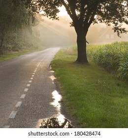 Dutch country road and farm in early morning sun after the rain - square
