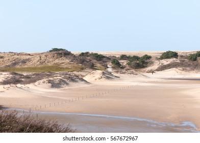 Dutch dunes