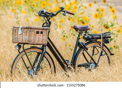 Dutch electric black cargo bicycle with basket in front of a field with blooming sunflowers