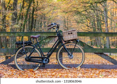 Dutch electric black cargo bicycle with basket in national park Veluwezoom