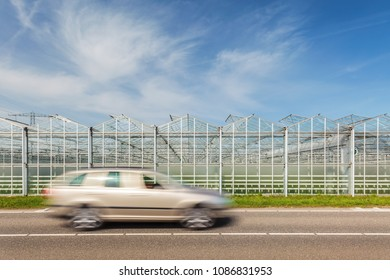 Dutch greenhouse with road and passing car in front