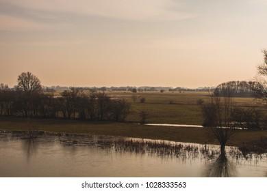 Dutch Landscape in the Betuwe