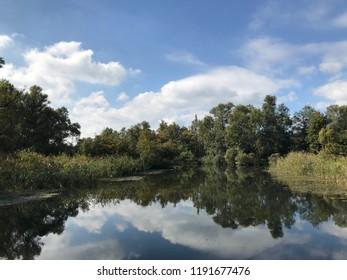 Dutch landscape the Biesbosch