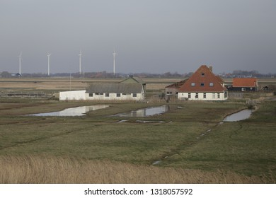 Dutch landscape with farmhouse, mill and little canals