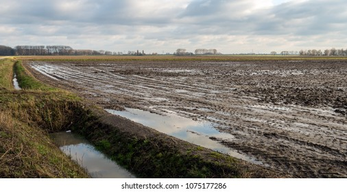 Dutch landscape with a field wet from the rain. The water surface in the ditch and the puddles on the land reflects the cloudy sky.