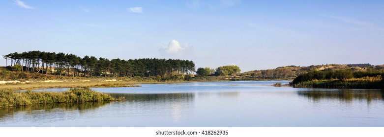 Dutch landscape with lake, trees and blue sky