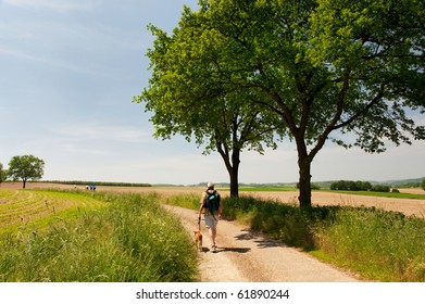Dutch landscape with man and dog in Limburg with hills and horizon