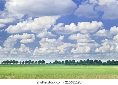 Dutch landscape with a row of trees, blue sky and dramatic shaped white clouds.