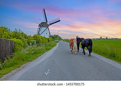 Dutch landscape with a traditional windmill in the countryside from the Netherlands