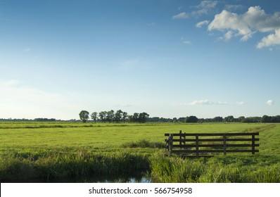 Dutch landscape wooden fence, blue sky, green grass field, cloud, tree, green, grass, horizon