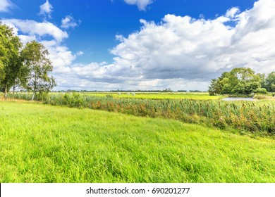 Dutch polder landscape with view of forests and meadows against Dutch cloudy skies