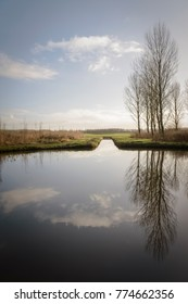 Dutch polder near Delft with beautiful reflection of the poplar trees in the water Netherland