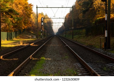 Dutch Railroad in Autumm