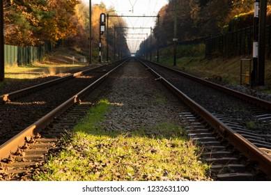 Dutch Railroad in Autumn