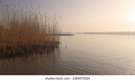 Dutch river Nieuwe Merwede in Biesbosch National Park, early morning