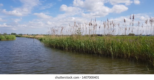 Dutch rural landscape seen from a boat