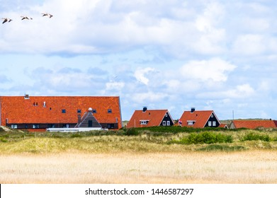 Dutch rural landscape with several red roof country houses covered with dutch tile located in wild field of Vlieland island in the Netherlands with three ducks flying over with blue cloudy sky