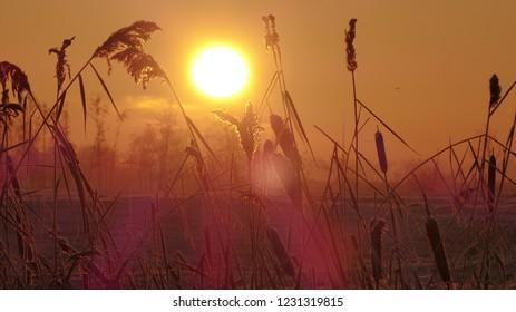 Dutch sunrise Ackerdijk